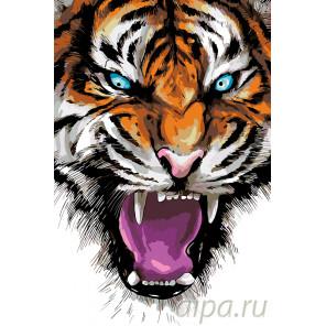 Свирепый тигр Раскраска картина по номерам на холсте A469