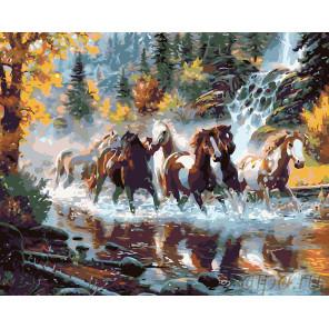 Табун на реке Раскраска картина по номерам на холсте KTMK-85845