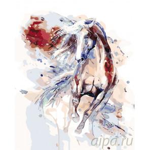 Обгоняя ветер Раскраска картина по номерам на холсте KTMK-486633