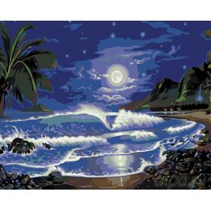 Лунный пляж Раскраска по номерам на холсте Живопись по номерам KTMK-901607