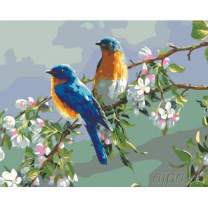 Раскладка Весенние певцы Раскраска по номерам на холсте Живопись по номерам KTMK-09352