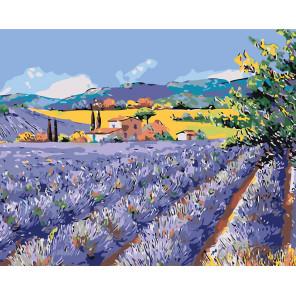 Лавандовый пейзаж Раскраска по номерам на холсте Живопись по номерам KTMK-654181