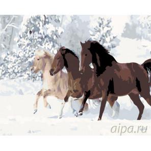 Кони на зимней прогулке Раскраска по номерам на холсте Живопись по номерам KTMK-662231