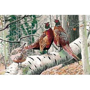 раскладка Фазаны в лесу Раскраска по номерам на холсте Живопись по номерам