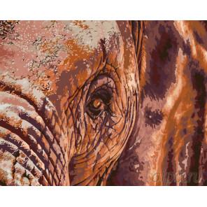 раскладка Мудрый слон Раскраска по номерам на холсте Живопись по номерам