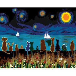 раскладка Любуясь звездным небом Раскраска картина по номерам на холсте
