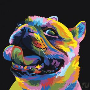 Радужный мопс Раскраска картина по номерам на холсте PA141