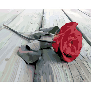 Красная роза на сером Раскраска картина по номерам на холсте KTMK-2474861