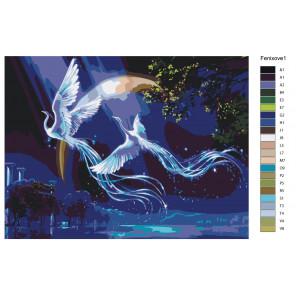 Макет Звездные фениксы Раскраска картина по номерам на холсте KTMK-Fenixove1
