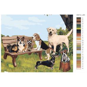 Макет Вечеринка четвероногих Раскраска картина по номерам на холсте Z090719-1