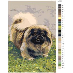 Макет Собака на лужайке Раскраска картина по номерам на холсте z5489