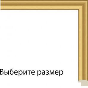 Выберите размер Каролина Рамка для картины на картоне N221