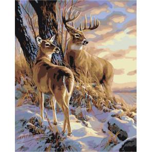 Закат в зимнем лесу Раскраска картина по номерам на холсте A604-100x125