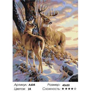 Сложность и количество цветов Закат в зимнем лесу Раскраска картина по номерам на холсте A604