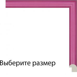Выберите размер Иллер Рамка для картины на картоне N223