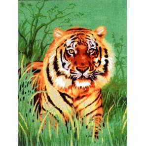 Тигр в траве Канва жесткая с рисунком для вышивки Gobelin L