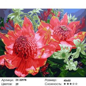Сложность и количество цветов Яркие цветы Раскраска картина по номерам на холсте ZX 22978