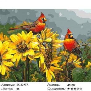 Сложность и количество цветов Кардиналы и подсолнухи Раскраска картина по номерам на холсте ZX 22977