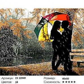 Сложность и количество цветов Под осенним дождём Раскраска картина по номерам на холсте ZX 22949