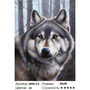 Сложность и количество цветов Волк Раскраска картина по номерам на картоне Белоснежка 3090-CS