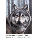Волк Раскраска картина по номерам на картоне Белоснежка