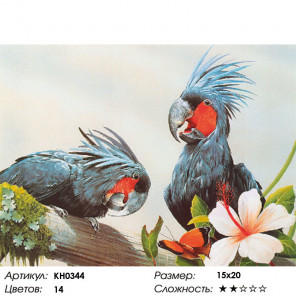 Сложность и количество цветов Попугаи Раскраска картина по номерам на холсте KH0344