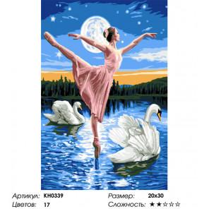 Сложность и количество цветов Лебединое озеро Раскраска картина по номерам на холсте KH0339
