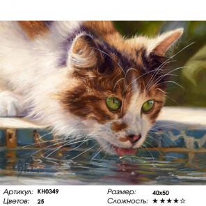 Сложность и количество цветов Жаркий день Раскраска картина по номерам на холсте KH0349