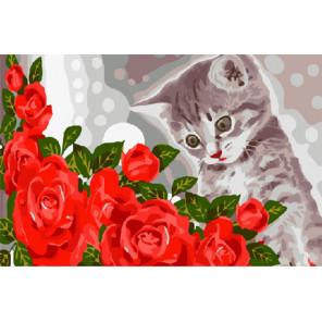 Котёнок и розы Раскраска картина по номерам на холсте CX3310