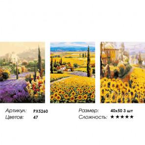 Сложность и количество цветов Цветочные поля Триптих Раскраска картина по номерам на холсте PX5260
