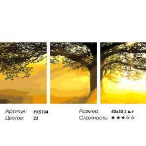 Сложность и количество цветов Солнце в листьях Триптих Раскраска картина по номерам на холсте PX5104