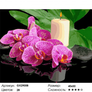 Сложность и количество цветов Орхидея и свеча Раскраска картина по номерам на холсте GX29058