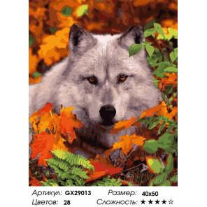 Сложность и количество цветов Волк в осеннем лесу Раскраска картина по номерам на холсте GX29013