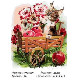 Сложность и количество цветов Котенок в тележке Раскраска картина по номерам на холсте PK26039