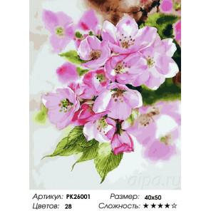 Сложность и количество цветов Цветение Раскраска картина по номерам на холсте PK26001