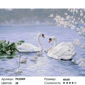 Сложность и количество цветов Лебединая семья Раскраска картина по номерам на холсте PK22009