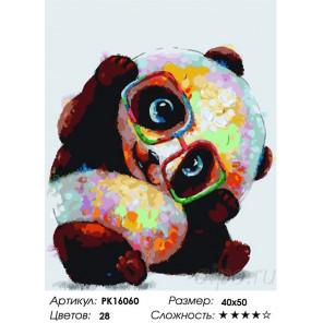 Сложность и количество цветов Панда в очках Раскраска картина по номерам на холсте PK16060