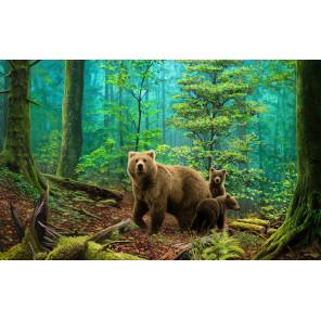 Медведи в лесу Алмазная вышивка мозаика Алмазное Хобби AH5331