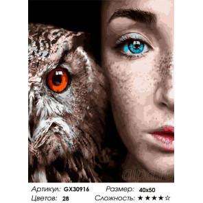Сложность и количество цветов Девушка и сова Раскраска картина по номерам на холсте GX30916