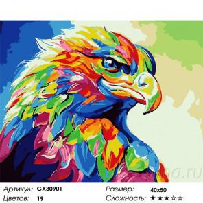 Сложность и количество цветов Радужный орел Раскраска картина по номерам на холсте GX30901
