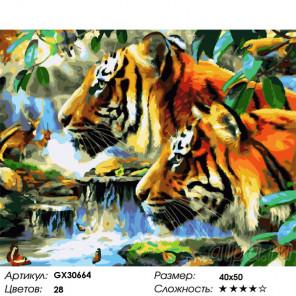 Сложность и количество цветов Тигры в джунглях Раскраска картина по номерам на холсте GX30664