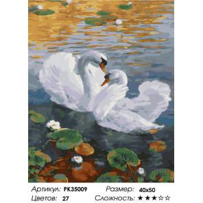 Сложность и количество цветов Лебеди и кувшинки Раскраска картина по номерам на холсте PK35009
