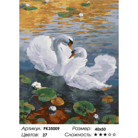 PK35009 Лебеди и кувшинки Раскраска картина по номерам на ...