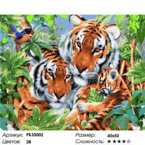 Сложность и количество цветов Семейство тигров Раскраска картина по номерам на холсте PK35002