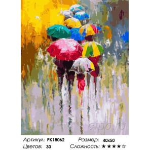 Сложность и количество цветов Дождливая погода Раскраска картина по номерам на холсте PK18062