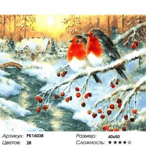 Сложность и количество цветов У зимней реки Раскраска картина по номерам на холсте PK16038