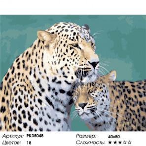 Сложность и количество цветов Семейство леопардов Раскраска картина по номерам на холсте PK35048