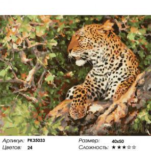 Сложность и количество цветов Отдых леопарда Раскраска картина по номерам на холсте PK35033