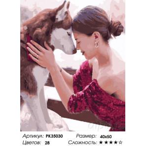 Сложность и количество цветов Волк и девушка Раскраска картина по номерам на холсте PK35030