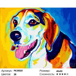 Сложность и количество цветов Бигль Раскраска картина по номерам на холсте PK35025